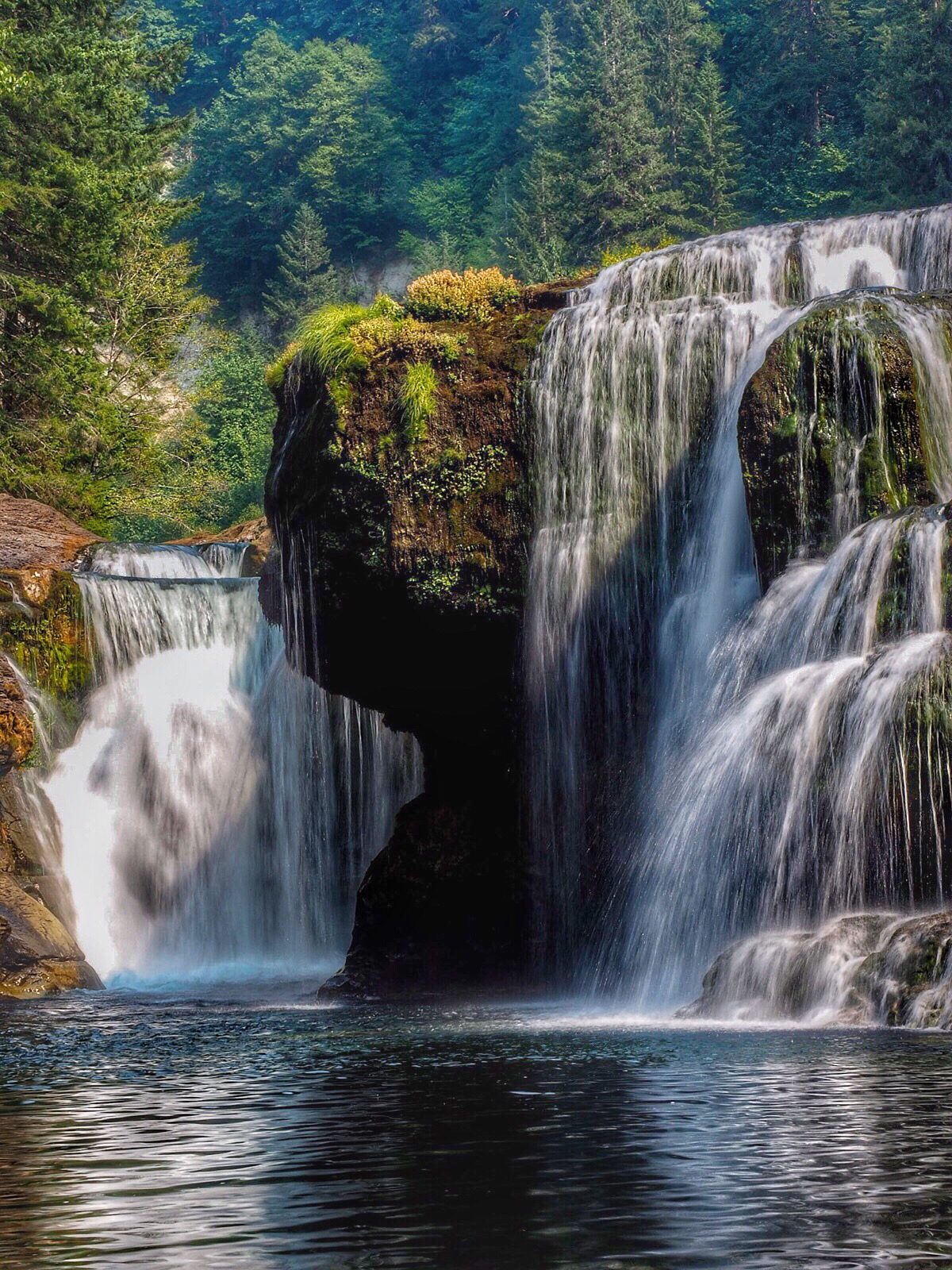 Waterfall in the Cascades